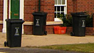 Wheelie bins and orange recycling boxes