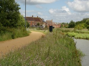 Photo of the canal with long grass on the banks